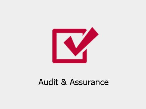 Audit & Assurance companies