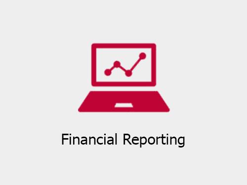 Financial Reporting companies