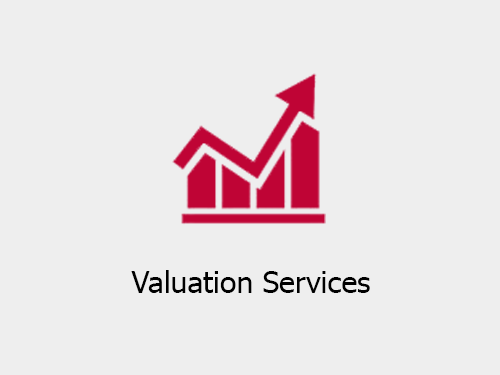 Valuation Services companies